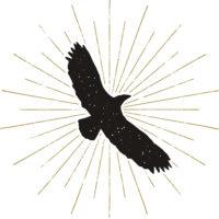15_Eagle